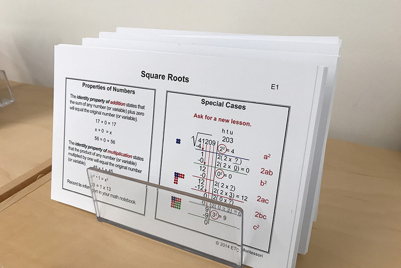 Upper Elementary Math Task Cards