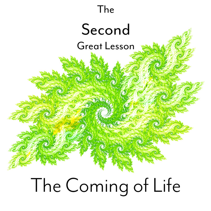 Montessori Second Great Lesson Bundle