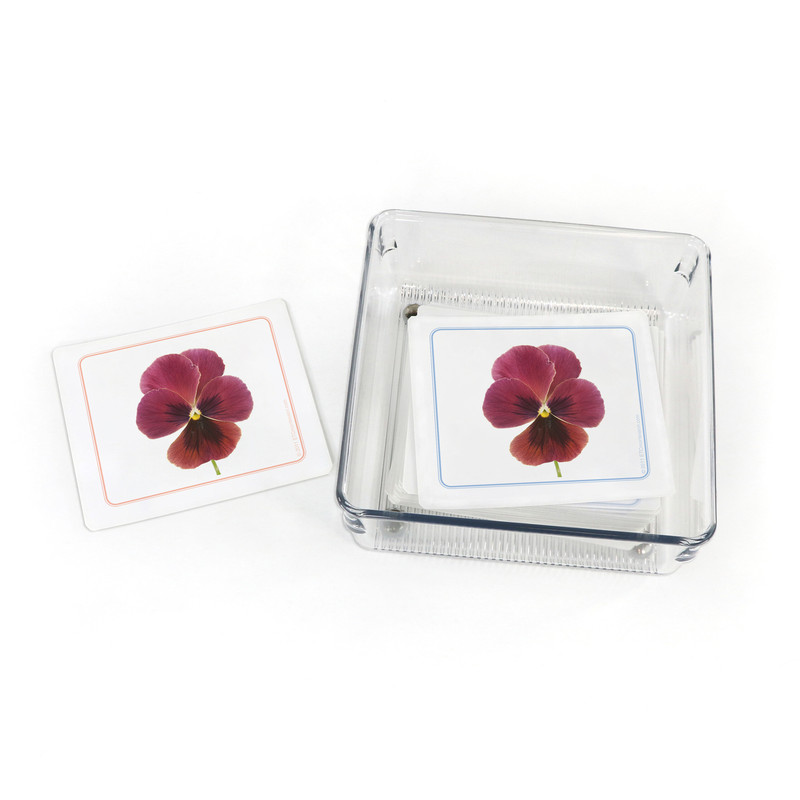 Flowers - Matching Cards (EC-0469B) with container