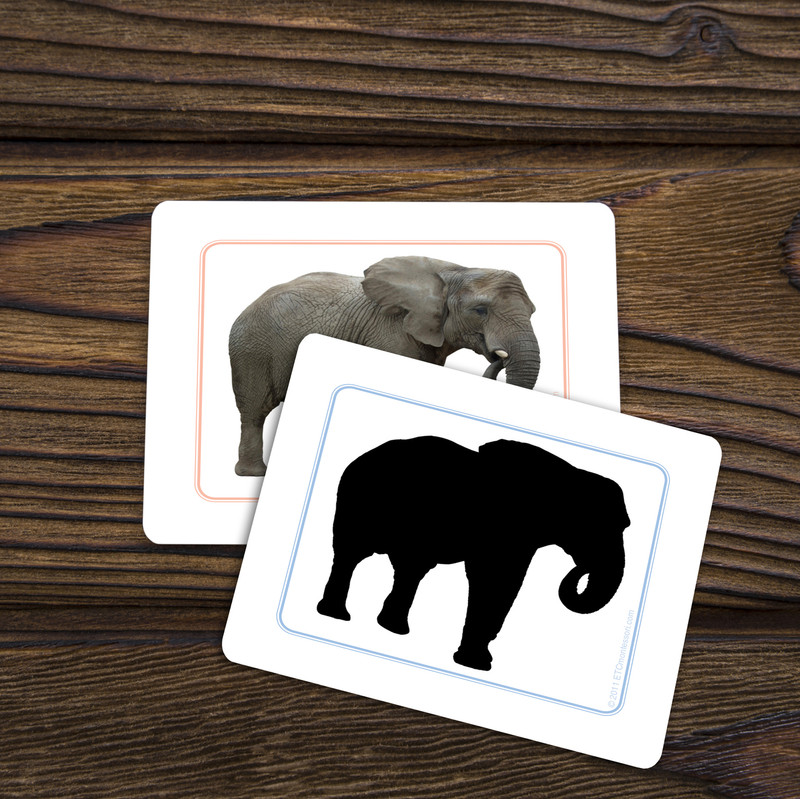 African Animals Silhouettes - Matching Cards