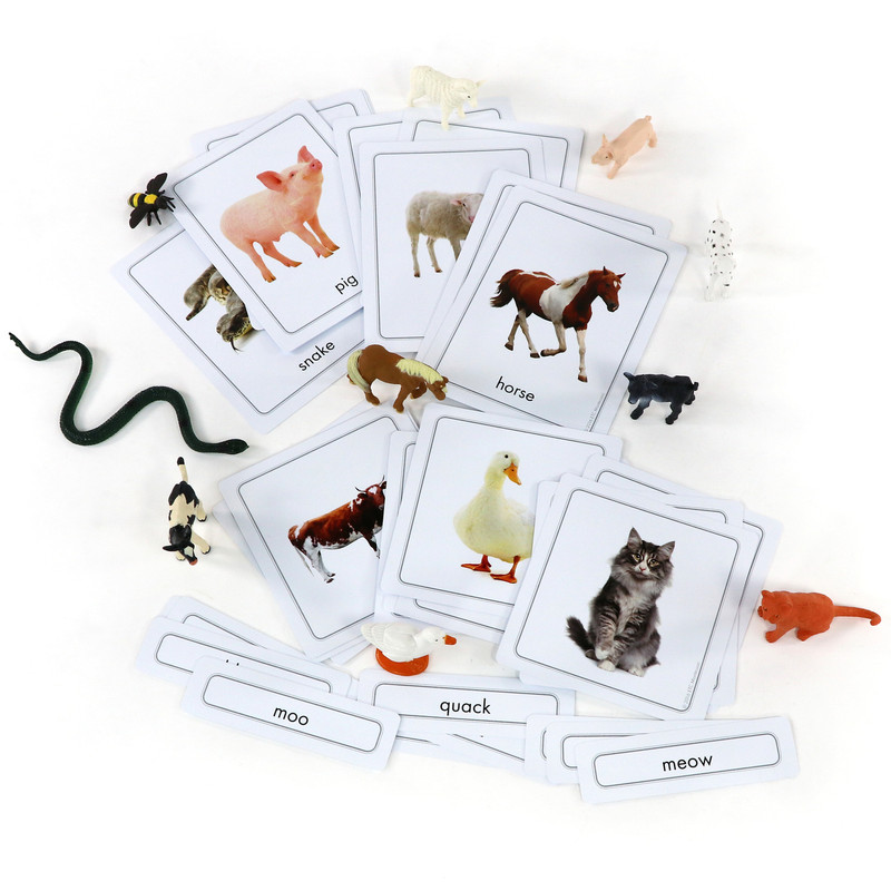 Animals and Their Sounds 3 Part Cards