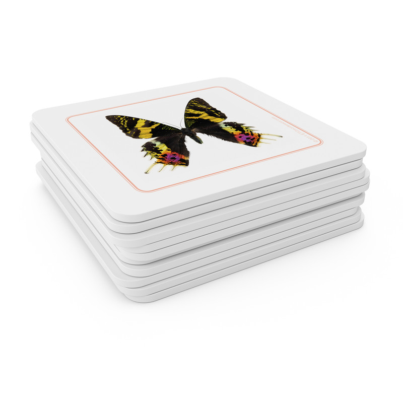 Butterflies - Matching Cards (EC-0411B)
