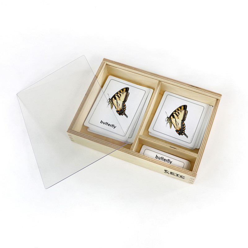 Parts of a Butterfly 3 Part Cards (EC-0451)