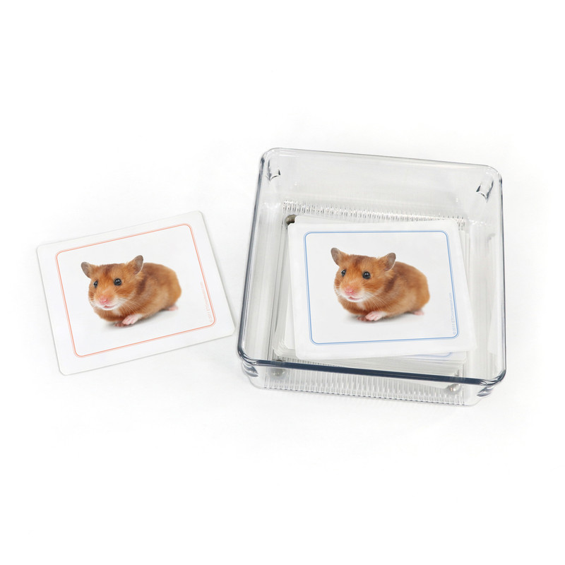 Pets - Matching Cards (EC-0477B) with container