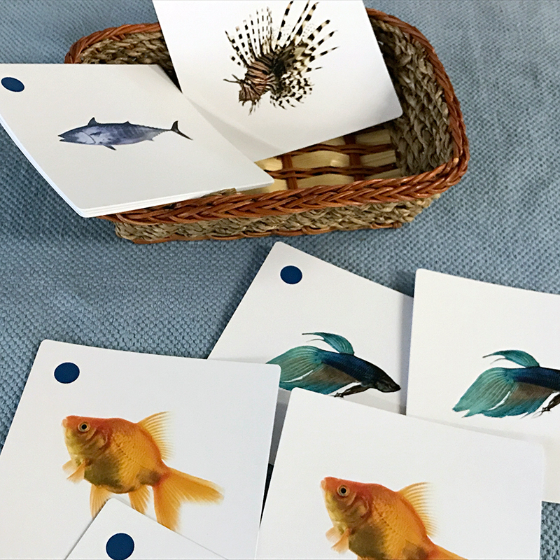 ETC Montessori printed materials showing fish matching cards