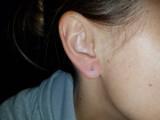 Montana Yogo sapphire round stud earrings 2.5mm