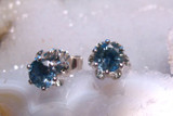 Montana Sapphire 6 Prong Buttercup Earrings Sterling Silver