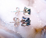 Montana Sapphire 6 Prong Buttercup Earrings Sterling Silver side view