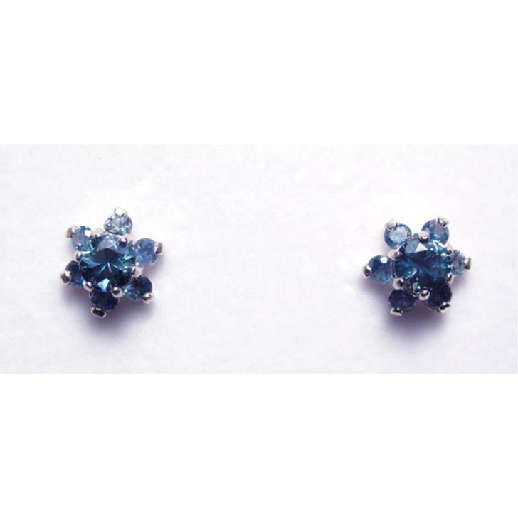 Montana Sapphire Flower earrings
