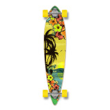 Pintail Tropical Day Longboard Complete