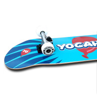"""Yocaher Complete Skateboard 7.75""""  - CANDY Series - Pop"""