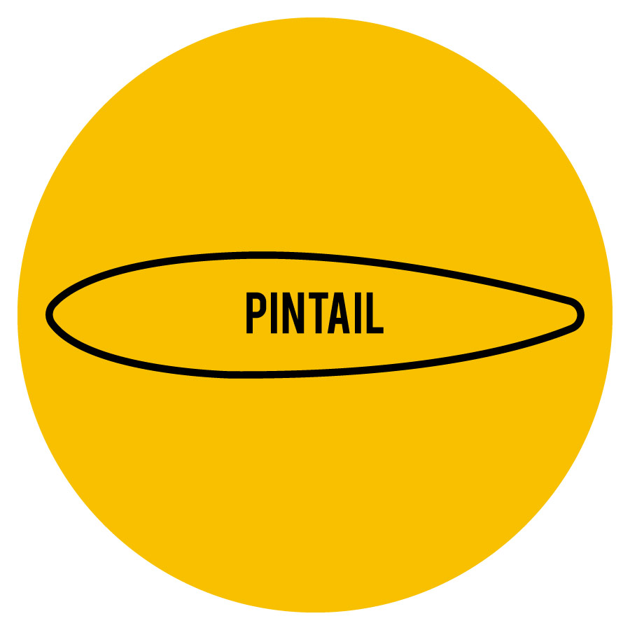 pintail-icon.jpg