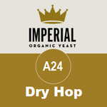 A24 - Dry Hop