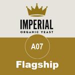 A07 - Flagship