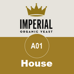 A01 - House