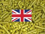 UK Hop Pack (3 Lbs hops)