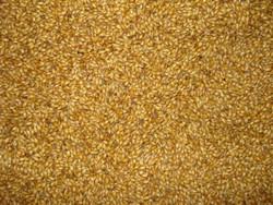 Carastan Malt (Bairds) 1-Lb