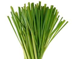 Lemongrass - 2.5 oz.