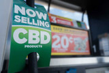 What to look for when buying CBD oil and how to find the best quality
