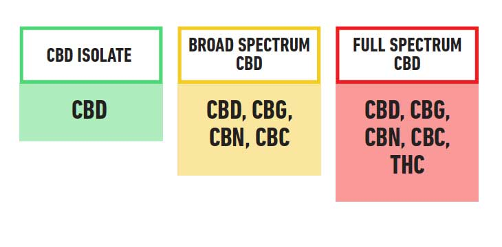 Differences of CBD Formulas
