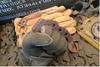 Raidops: Anaconda Pro - Dark Brown