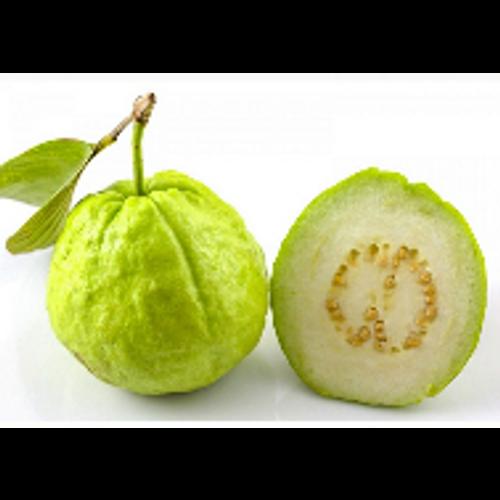 Guava Big