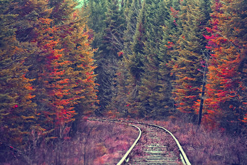Adirondack Rails