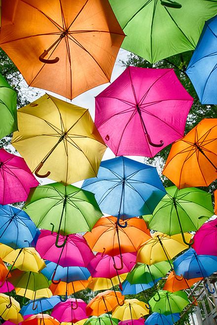 Happiness Under Rain
