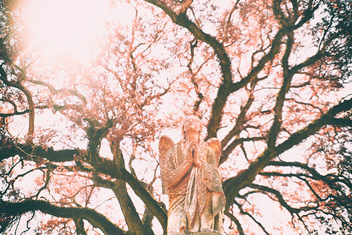 Pink Prayers