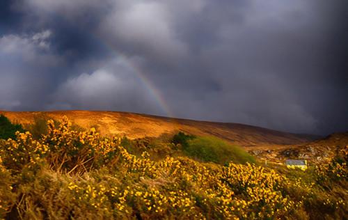 Yellow House Rainbow