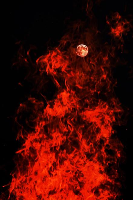 Full Moon Fired