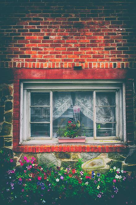 Brick and Petunias