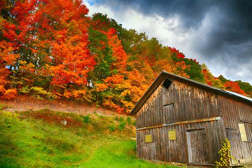 Barn Of Autumn