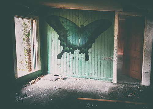 House Of The Butterfly