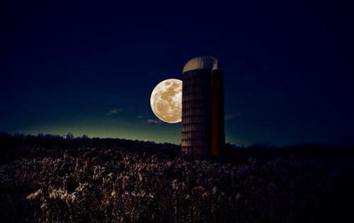 Moon Silo