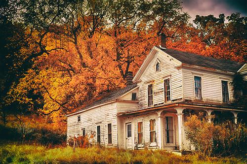 Autumn Abandon