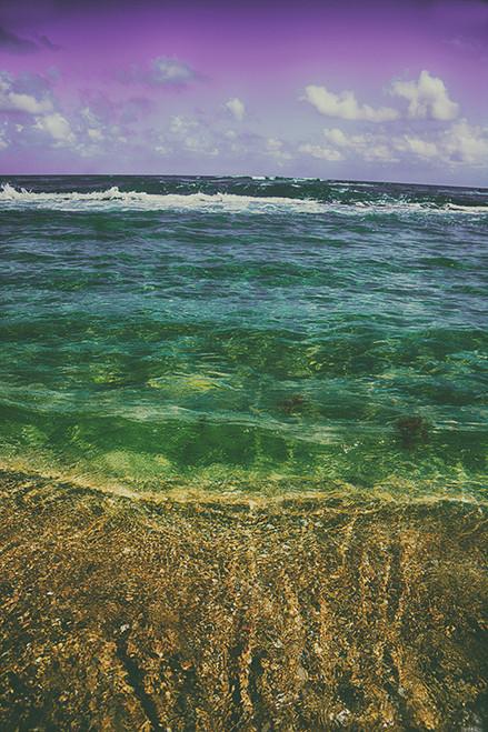 Purple Painted Beach