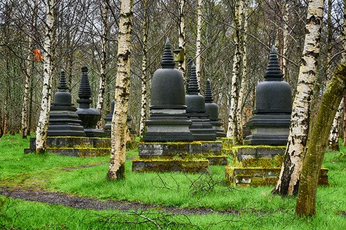 Birch Stupas