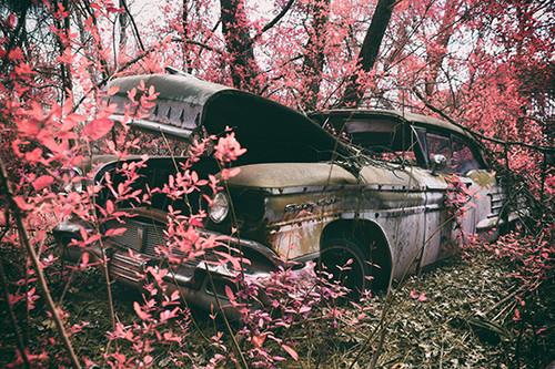Pink Eighty Eight