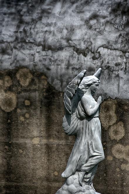 Concrete Angel