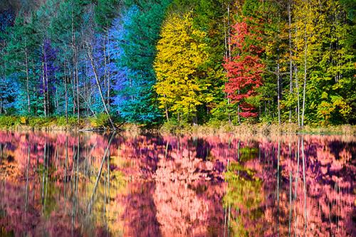 Autumn Melting