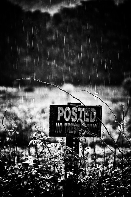 Posted Downpour