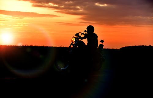 Harley Silhouette