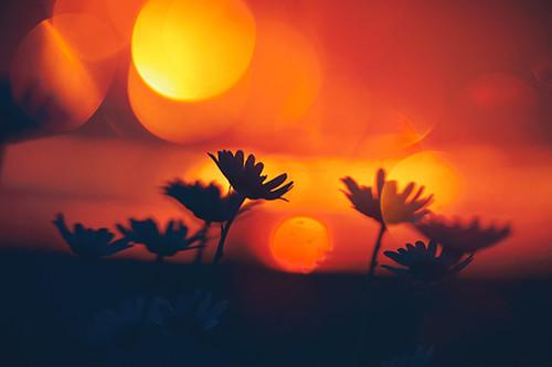 Breath In Orange