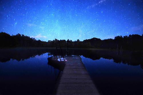 Starry Daydreams