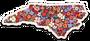 Floral NC Sticker