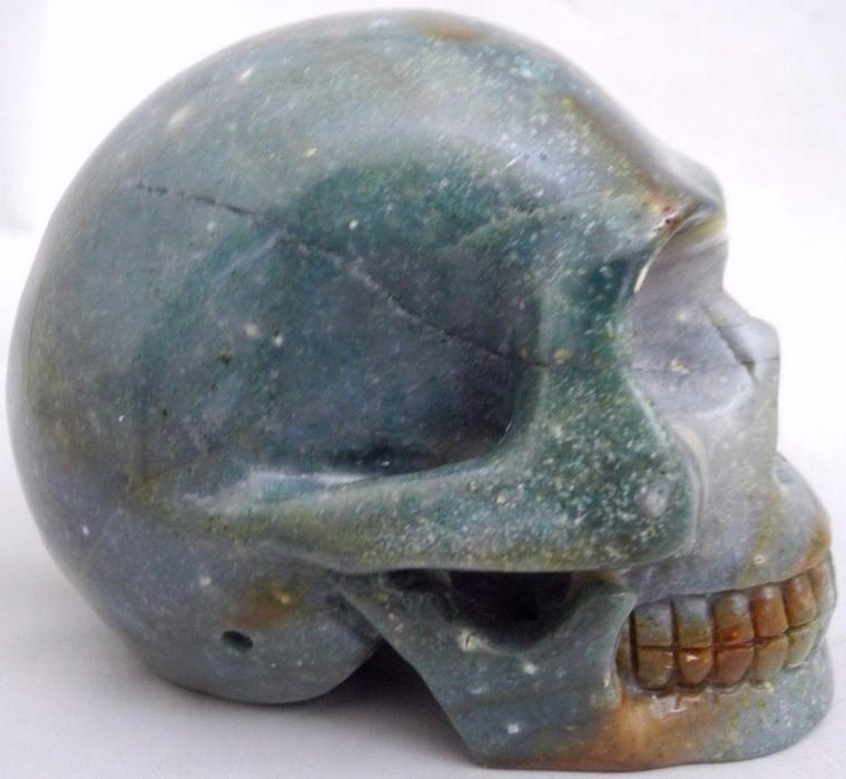 Raven's Carved Lemur Agate Crystal Skull