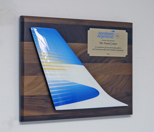 A great gift for retirements or special recognition, this beautiful wall mounted tail comes with a full color, fully customize-able dedication plaque to commemorate that special aviation enthusiast!