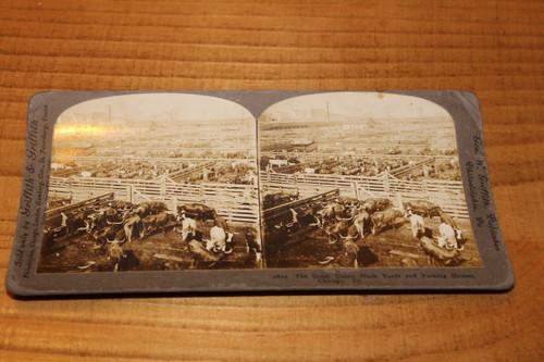 Stereoview Card - Great Union Stockyards