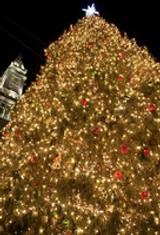 Holiday Season in Boston